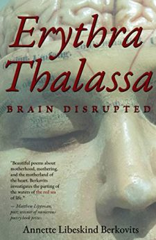 Book cover for Erythra Thalassa: Brain Disrupted