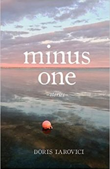 Book cover for Minus One