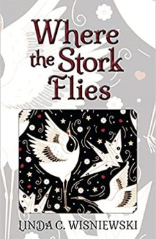 Book cover for Where the Stork Flies