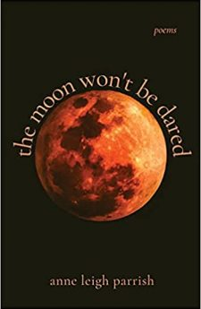 Book cover for the moon won't be dared